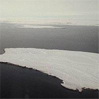 Hải quân Nga phát hiện 5 đảo mới tại Bắc Cực