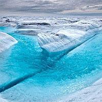 12 điều thú vị về Nam cực và Bắc cực