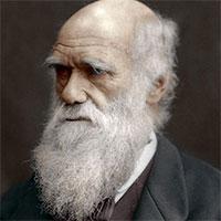 Sở thích ăn uống lạ lùng của Charles Darwin
