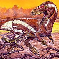 """Khai thác đá, đụng độ tổ tiên """"quái thú"""" không cánh và hung ác của loài chim"""