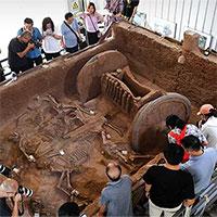 Cận cảnh cỗ xe hoàng gia khảm ngọc thời Tây Chu gần 3.000 tuổi