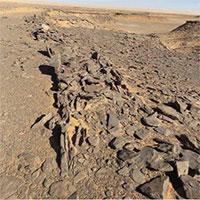 Bí ẩn các di tích bằng đá nghìn năm tuổi ở Ả Rập Saudi