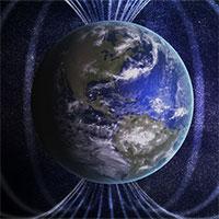 """Thế giới sinh vật từ """"Trái đất đảo ngược"""" lộ diện ở Nhật"""