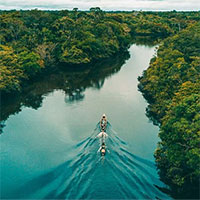 Vì sao không có cây cầu nào dám bắc qua sông Amazon?