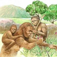 Vì sao người tiền sử lại rời khỏi lục địa châu Phi?