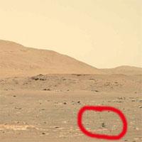 Trực thăng Ingenuity của NASA thất bại trong chuyến bay thứ 4 trên sao Hỏa