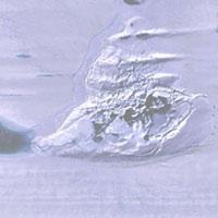 Hồ chứa 750 triệu m3 nước biến mất bí ẩn