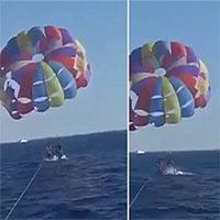 Video: Cá mập nhảy lên khỏi mặt nước tấn công người chơi dù lượn ở biển Đỏ