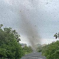 """Video: """"Lốc xoáy muỗi"""" đen kịt bầu trời tại Nga"""
