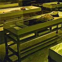 Xác ướp 7.000 năm được đưa vào danh sách Di sản Thế giới
