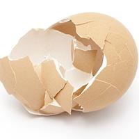 Nhà khoa học tạo vật liệu làm xương nhân tạo từ vỏ trứng