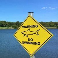 Sân golf duy nhất trên thế giới nằm gần nơi sinh sống của đàn cá mập bò hung hãn