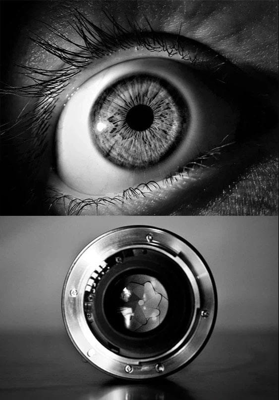 Đồng tử thường được ví như độ mở khẩu độ của lens máy ảnh ở chế độ tự động