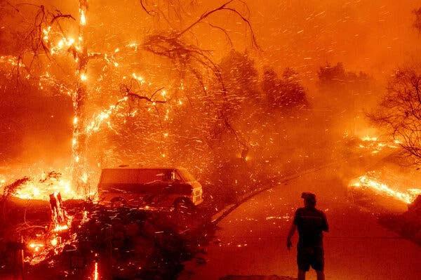 Đám cháy rừng lớn.
