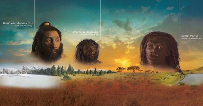 Những sự kiện tuyệt chủng chúng đều liên quan đến một sự kiện thay đổi khí hậu nào đó.