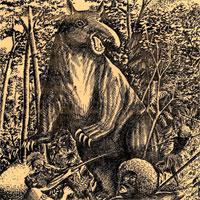 Huyền bí loài heo quỷ trong truyền thuyết ở Papua New Guinea