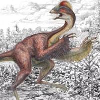 """Phát hiện hóa thạch """"gà địa ngục""""168 triệu năm"""