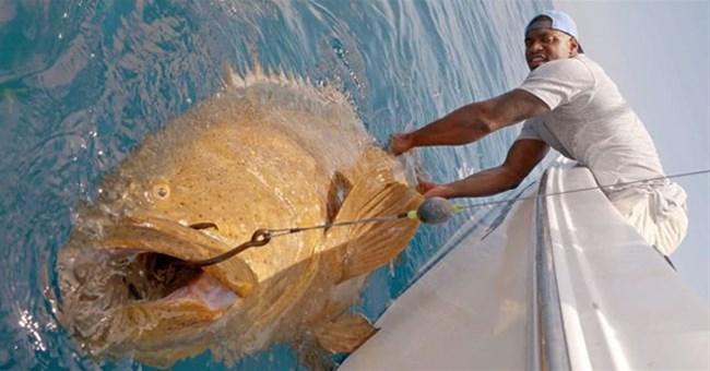 """Ngôi sao bóng bầu dục cũng """"toát mồ hôi hột"""" khi kéo lên """"quái vật"""" ăn thịt cả cá mập này"""
