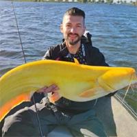 Cần thủ bắt được cá nheo màu vàng chanh cực hiếm gặp