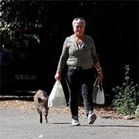 Lợn rừng tràn vào, xâm chiếm các khu phố ở Rome