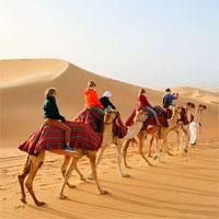 Tại sao các nước Ả Rập có vô số sa mạc nhưng vẫn nhập khẩu cát?
