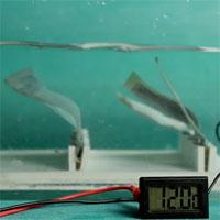 """Trung Quốc chế tạo máy phát điện dưới nước """"bắt chước"""" tảo biển"""